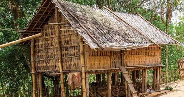 Here's how bamboo can serve as a promising construction material in earthquake-prone areas!
