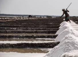 Shapoorji Pallonji proposes 1 lakh affordable homes in Maharashtra's salt pan land