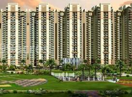 RERA can freeze bank accounts; builder requires consent for transactions